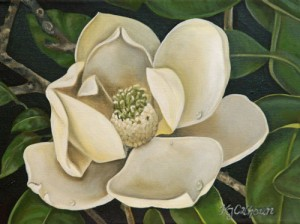 Magnolia-Blossom-e