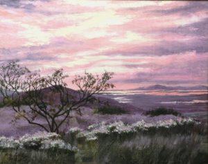 Sunset MDI