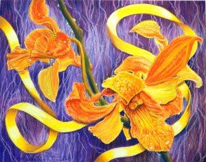 golden glow orchid